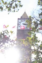 The clocktower on Ave Habib Bourguiba, and Tunisian flags.