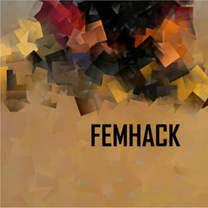FemHack